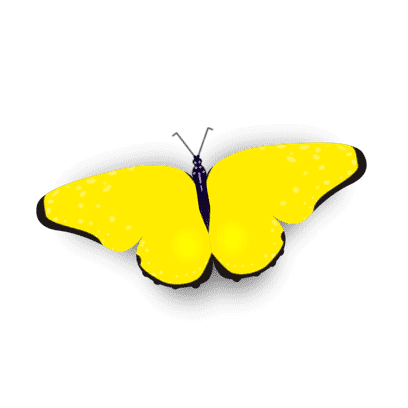 Bright Butterfly Stickers messages sticker-6