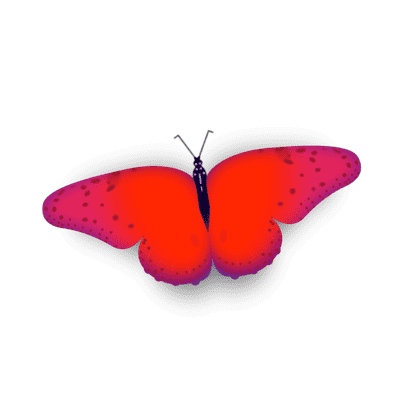 Bright Butterfly Stickers messages sticker-3