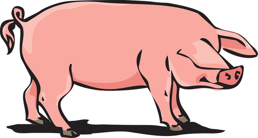 Pig Stickers - 2018 messages sticker-4