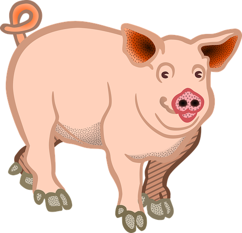 Pig Stickers - 2018 messages sticker-8