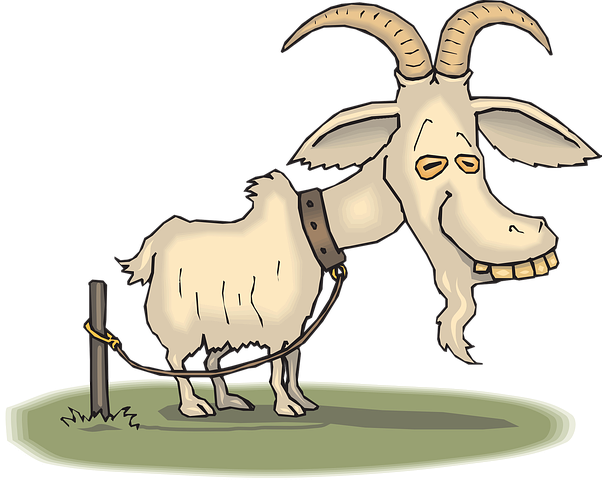 Goat Stickers - 2018 messages sticker-11