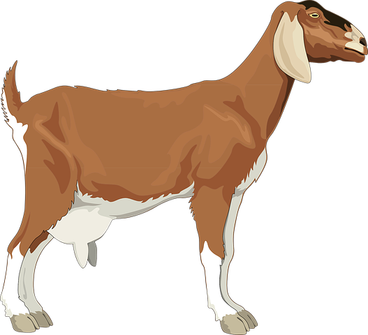 Goat Stickers - 2018 messages sticker-7