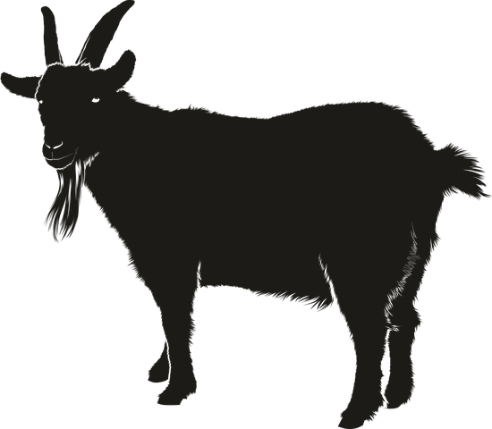 Goat Stickers - 2018 messages sticker-4