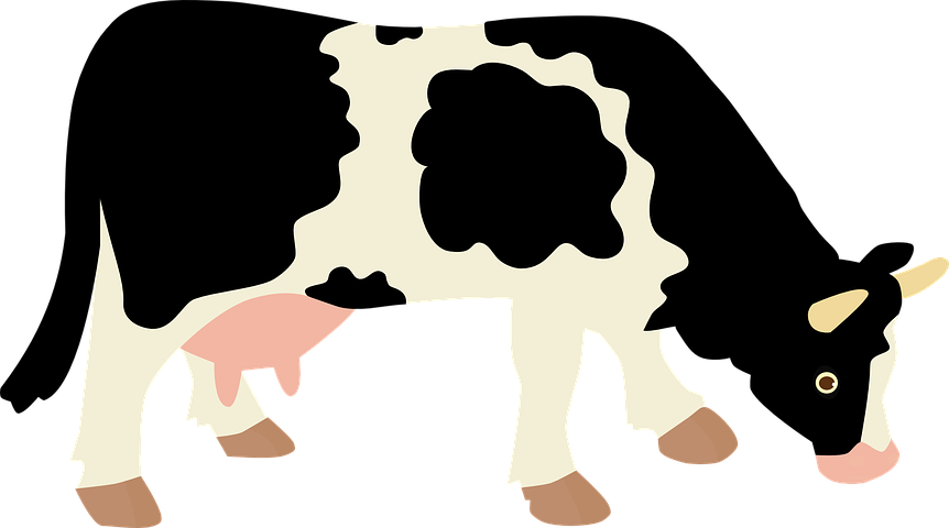 Cow Stickers - 2018 messages sticker-4
