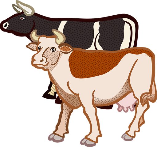 Cow Stickers - 2018 messages sticker-10