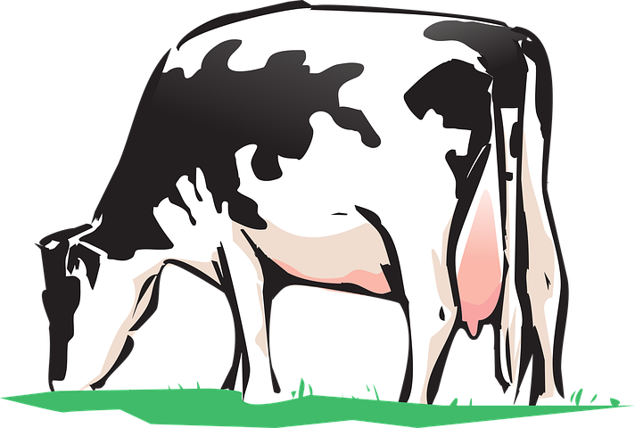 Cow Stickers - 2018 messages sticker-1