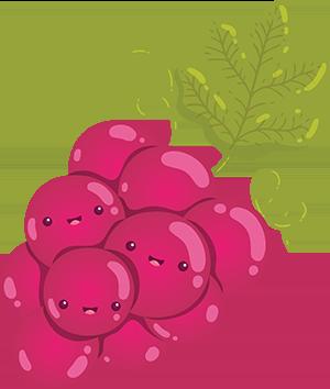 FruitMoji Stickers Pro messages sticker-1