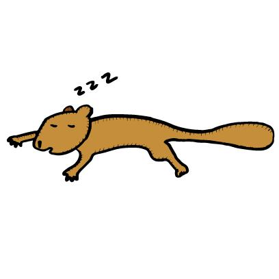Happy Squirrels Stickers messages sticker-3