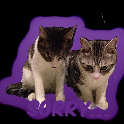Cat Bros. Sticker Lite messages sticker-0