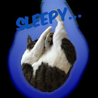 Cat Bros. Sticker Lite messages sticker-11