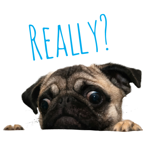 Pug Life messages sticker-11