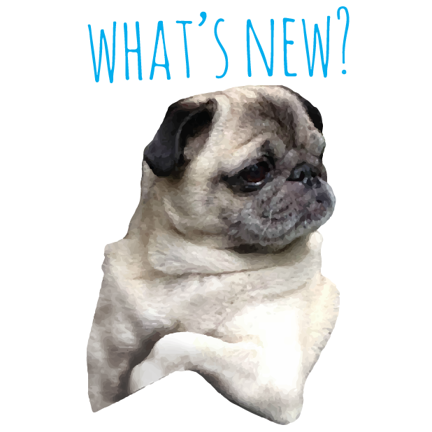 Pug Life messages sticker-3