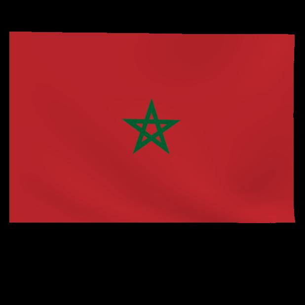 Top 32 World Soccer Flags messages sticker-6