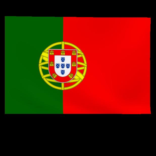 Top 32 World Soccer Flags messages sticker-4