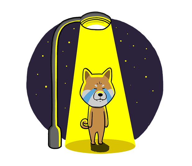 Shiba Dog 'Rui' messages sticker-11