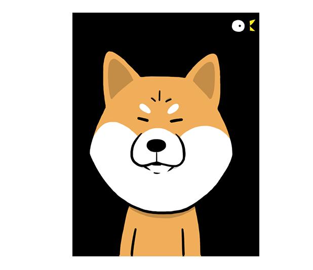 Shiba Dog 'Rui' messages sticker-1