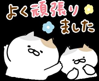 動く!にゃんこたち messages sticker-10