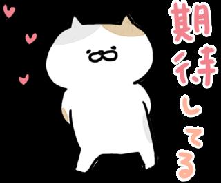 動く!にゃんこたち messages sticker-0