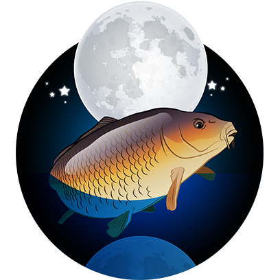 CARPology Stickers messages sticker-11