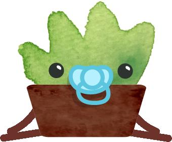Happy Succulents messages sticker-10