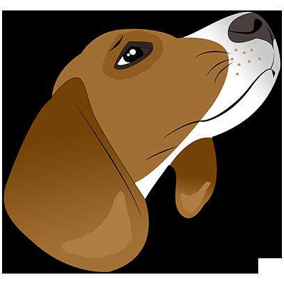 Beagle Bruno messages sticker-2