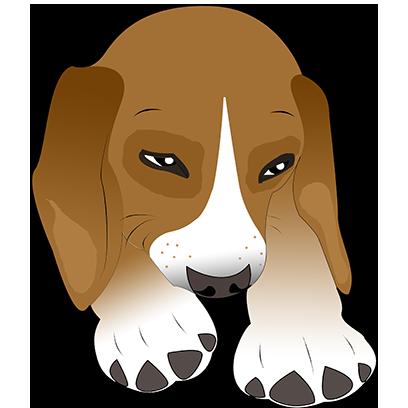 Beagle Bruno messages sticker-3