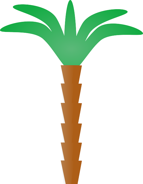Palm Tree Stickers messages sticker-11