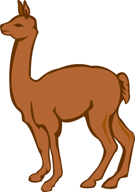 Lllama Stickers messages sticker-7