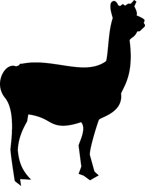 Lllama Stickers messages sticker-4