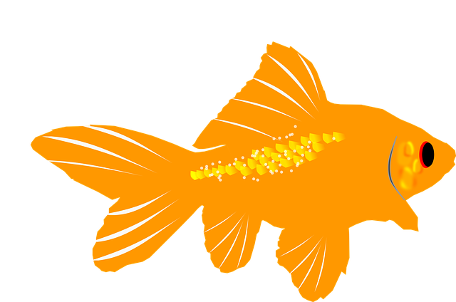 Glorious Goldfish Stickers messages sticker-1