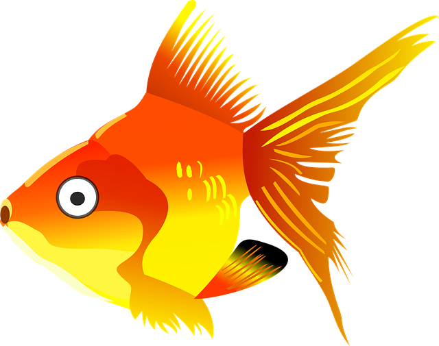 Glorious Goldfish Stickers messages sticker-9