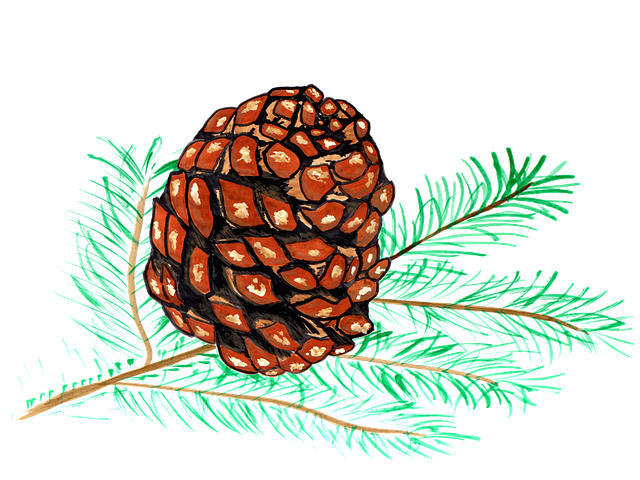 Pine Cone Stickers messages sticker-7