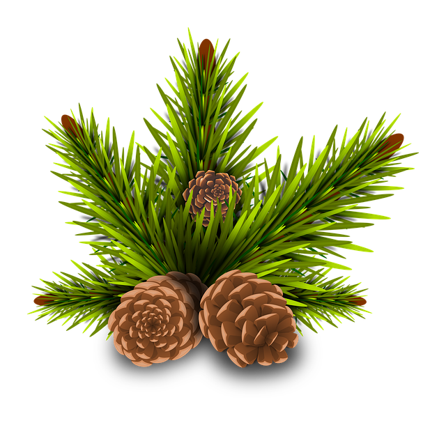 Pine Cone Stickers messages sticker-8