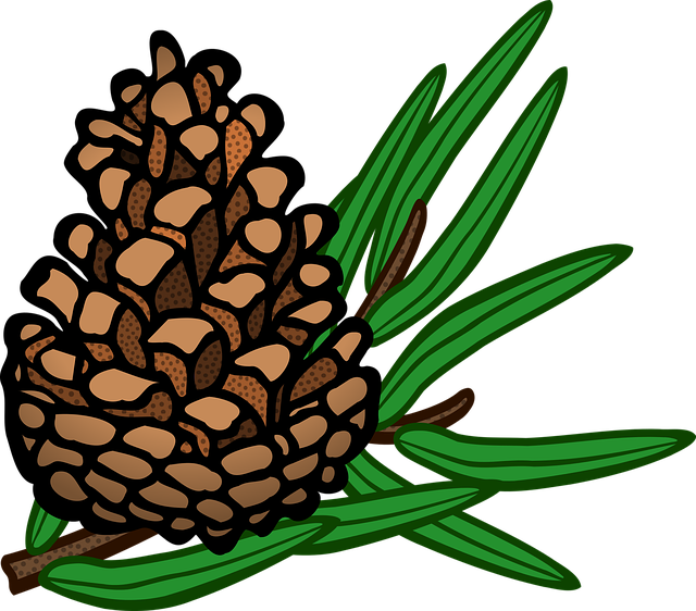 Pine Cone Stickers messages sticker-1