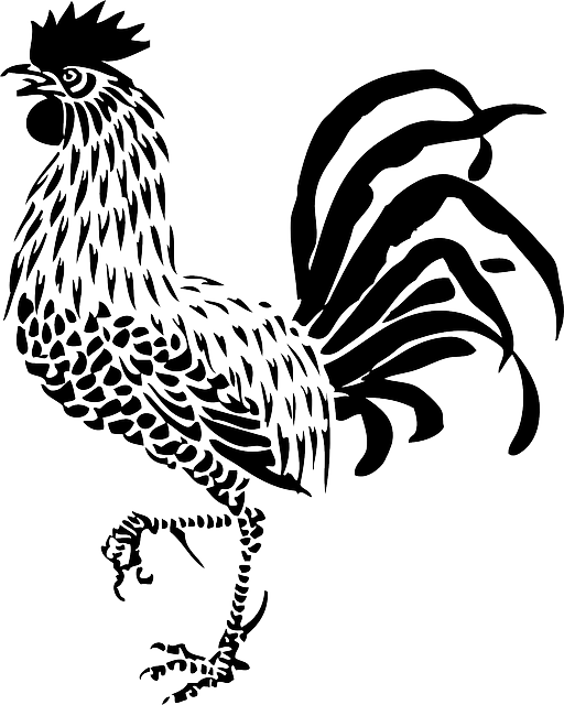 Raucous Rooster Stickers messages sticker-10