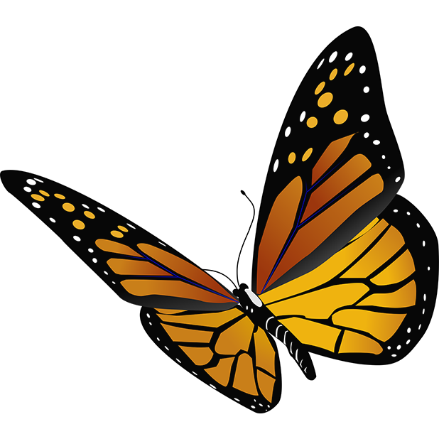 Butterflies - Farfalle messages sticker-5