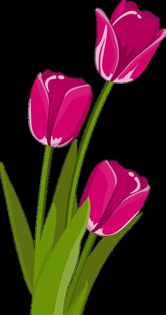 Terrific Tulip Stickers messages sticker-0