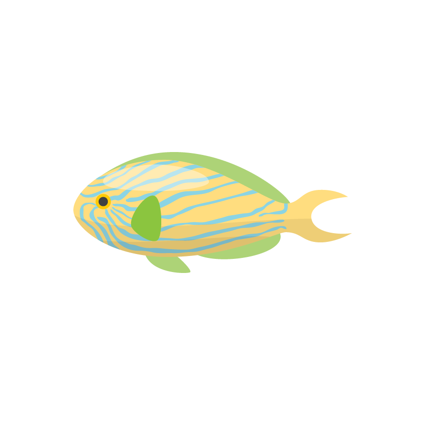 Magic Fish AR messages sticker-6