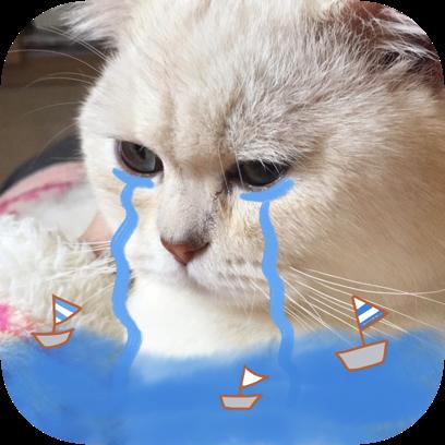 Icon喵~ messages sticker-0