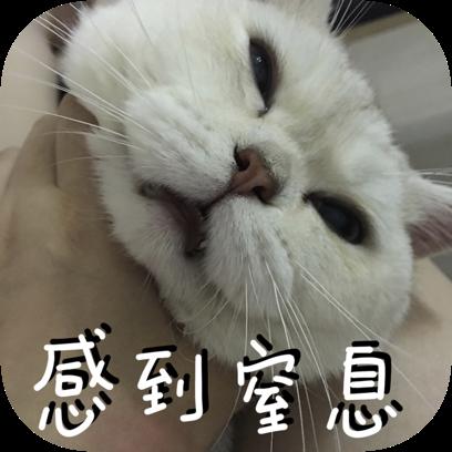 Icon喵~ messages sticker-6