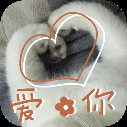 Icon喵~ messages sticker-9