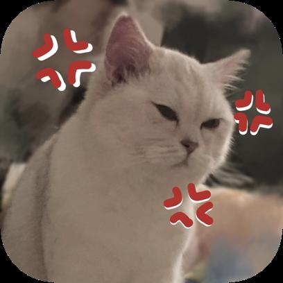 Icon喵~ messages sticker-2