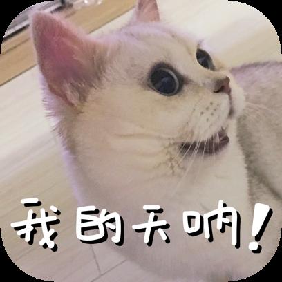 Icon喵~ messages sticker-11