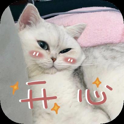 Icon喵~ messages sticker-4