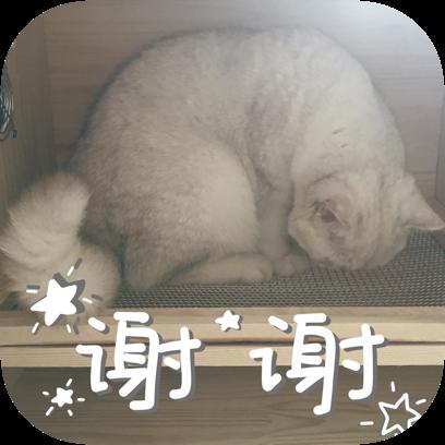 Icon喵~ messages sticker-3
