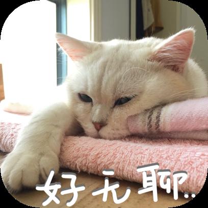 Icon喵~ messages sticker-5