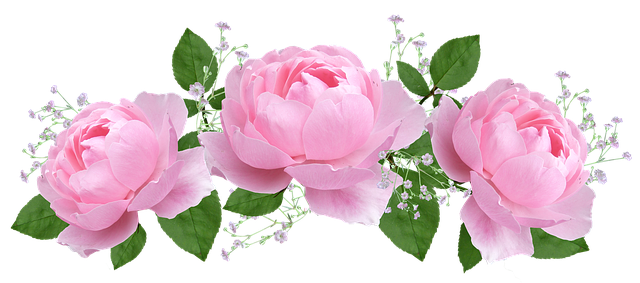 Roses Stickers messages sticker-11