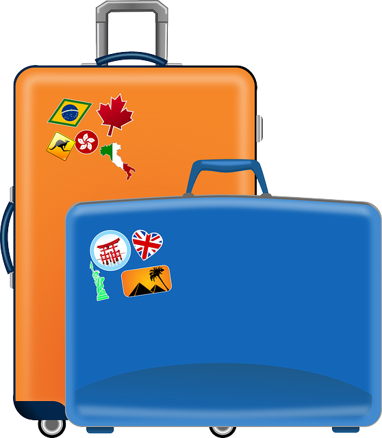 Luggage Stickers messages sticker-4