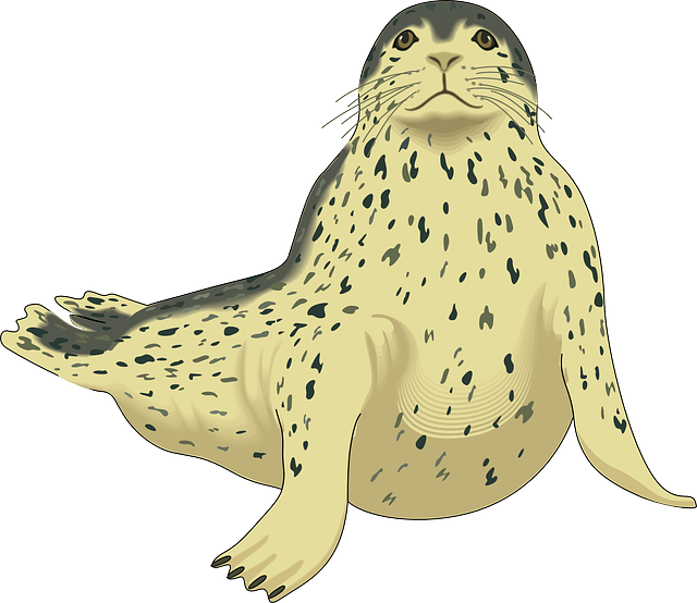 Slippery Seal Stickers messages sticker-6