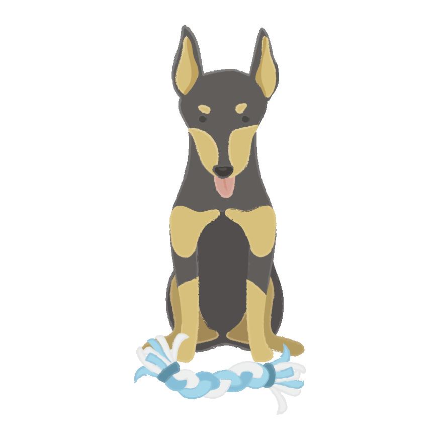 Puppy Wear Co. messages sticker-3